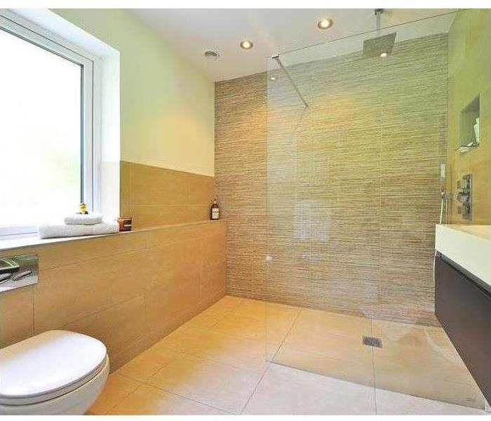 Mold Remediation Nobody Wants a Moldy Bathroom in Lufkin Texas