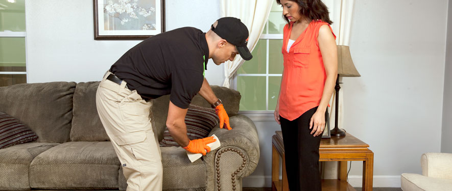 Lufkin, TX carpet upholstery cleaning